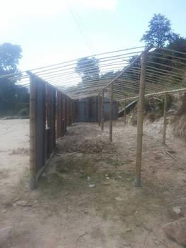 mit Bambusstangen wurde eine Notunterkunft errichtet